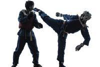 Het verminderen van agressie met martial arts - een contradictie?
