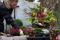 Fall planten op het kerkhof - suggesties