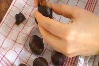 Kastanjes koken - een recept voor zelfgemaakte
