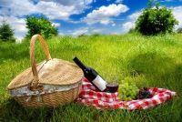 Romantische picknick voor de eerste date - het lukt