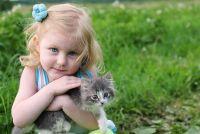 Kat uitwerpselen in de zandbak - dus houd katten uit je tuin afstandsbediening