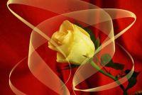 Wederzijds respect in de relatie - het lukt
