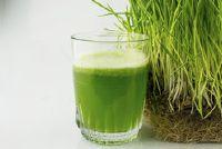 Groen en gezond - tarwegras sap als een voedingssupplement