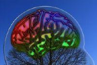 Progressie in de psychologie - een duidelijke uitleg