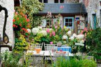 Het creëren van een Cottage Garden - Mededelingen