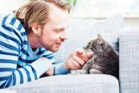 Opgeblazen gevoel bij katten - dus kan je helpen