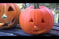 Halloween decoratie selbermachen - Aanwijzingen voor gruwelijke Accessoires