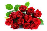 Wat bloemen heb je een vrouw te geven?
