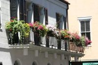Balkon Greenery in het voorjaar - zodat uw balkon is een eye-catcher
