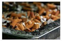 Verwijder nicotine geur in de auto - dus slaagt's