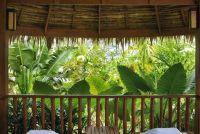 Groot balkon planten - dus het balkon is ondoorzichtig