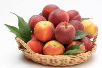 Planten Vineyard perziken - zodat je het goed te krijgen
