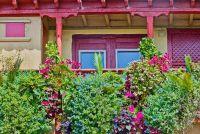 Schik balkon planten opknoping - dus het is een plant pracht