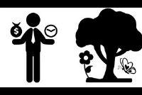 Gemakkelijk te verklaren verschil economie en ecologie