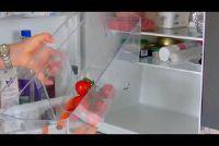 Ontsmet de koelkast - dus het is mogelijk grondig