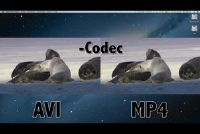 AVI of MP4 - betere kwaliteit?
