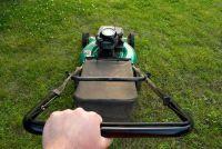 Eerste turf cut na het zaaien - zodat u het gazon goed te onderhouden