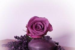 Etherische oliën: mengsels produceren zelf - twee recepten voor massage olie met lavendel
