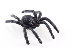 Ongebruikelijke Halloween kostuums - dus uw kinderen zal de spin