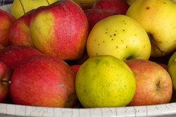 Gedroogde Apple Rings: calorieën en ingrediënten - Ontdek meer