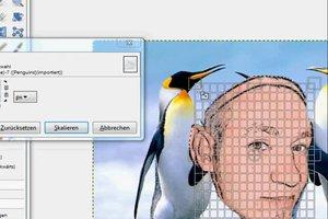 Plaats het hoofd op een foto - hoe het werkt met de freeware GIMP