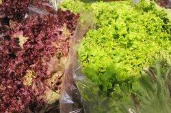 Calorieën bereiden saladedressing - twee recepten met yoghurt