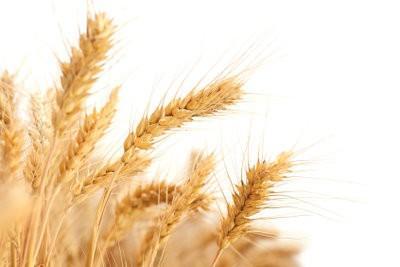 Allergie voor gluten - dus glutenvrij dieet