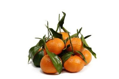Zijn mandarijnen gezond?  - Meer informatie over de heerlijke fruit Ontdek